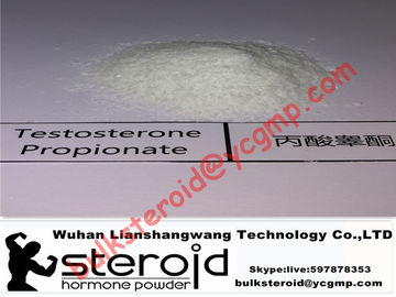 চীন Positive Testosterone Steroids Powder Testosterone Propionate Without Side Effects পরিবেশক